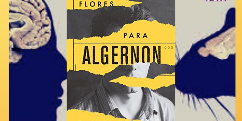 Flores para Algernon: Quanto vale a inteligência?